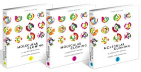 Molecular Cloning: A Laboratory Manual